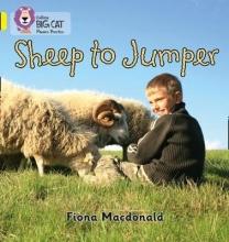 Fiona MacDonald Sheep to Jumper