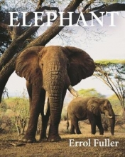 Errol Fuller Elephant