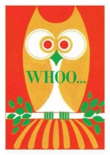 Whoo! Owl Birthday Card [With 6 Envelopes]