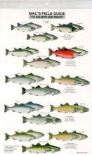 MacGowan, Craig Mac`s Field Guide to Trout and Salmon of North America