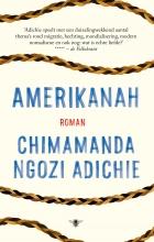 Chimamanda Ngozi  Adichie Amerikanah