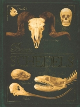 Colson, Rob Bones schedels