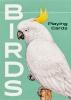 ,Birds
