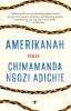 <b>Chimamanda Ngozi  Adichie</b>,Amerikanah