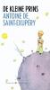 Antoine de Saint-Exupery,De kleine prins