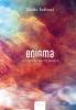 <b>Guido  Eekhaut</b>,Enigma