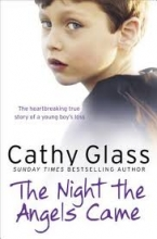 Cathy Glass The Night the Angels Came