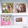 , Horses dreams dagboek paarden