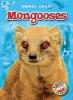 Borgert-spaniol, Megan,Mongooses