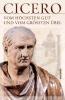 Cicero,Vom höchsten Gut und vom größten Übel - De finibus bonorum et malorum libri quinque (Vollständige Ausgabe)