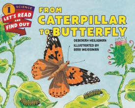 Heiligman, Deborah From Caterpillar to Butterfly