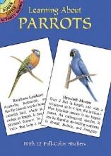 Lisa Bonforte Learning about Parrots