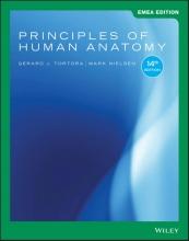 Gerard J. Tortora,   Mark Nielsen Principles of Human Anatomy