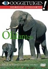 OLIFANTEN onthult al de legenden en verhalen over het grootste zoogdier dat ooit op aarde rondliep.