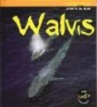 Rod Theodorou Walvis