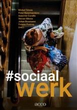 Yvonne Postma Michel Tirions  Peter Raeymaeckers  Annemie Cornille  Steven Gibens  Johan Boxstaens, #sociaalwerk