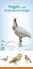 Jip  Louwe Kooijmans, ,MINIGIDS Vogels van Nederland en België