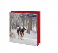 Wmc1015 , Kerstkaart mapje 10 stuks met env natuurmonumenten winter