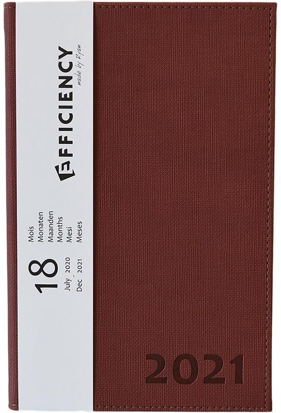 86269950.br,Ryam efficiency agenda 18 mnds 2020-2021 a5 bruin