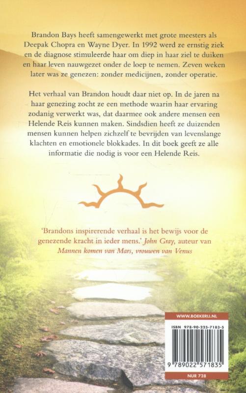Brandon Bays,De helende reis
