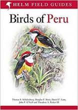 Douglas F. Stotz,   Thomas S. Schulenberg,   John P. O`Neill,   Theodore A. Parker III Birds of Peru