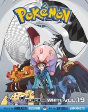 Kusaka, Hidenori Pokemon Black and White, Vol. 19