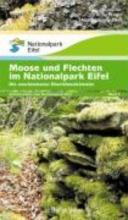 Moose und Flechten im Nationalpark Eifel
