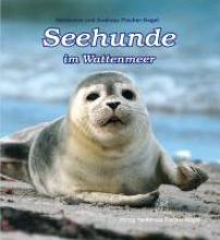 Fischer-Nagel, Heiderose Seehunde im Wattenmeer