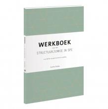 Cynthia  Schultz Werkboek voor een structuurjunkie in spe
