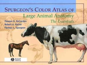 Brooks, Gregory Spurgeon`s Color Atlas of Large Animal Anatomy