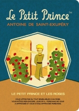 Le Petit Prince Stitch Stitch Medium Grid Notebook