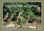LoRo-Artwork, Laufenten im Garten (Posterbuch DIN A3 quer)
