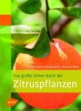 Klock, Peter Das große Ulmer-Buch der Zitruspflanzen