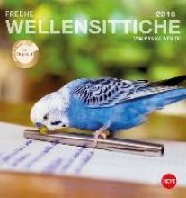 Freche Wellensittiche 2016. Postkartenkalender