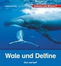 Prinz, Johanna Wale und Delfine