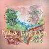 """,Moya Brennan – """"canvas"""" (cd)"""