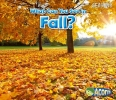 Smith, Sian,What Can You See in Fall?