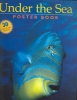 Case, Andy,   Faulkner, Mark,   Seidel, Edward, Ph.D.,Under the Sea Poster Book