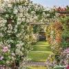 ,English Country Gardens 2017 Brosch�renkalender