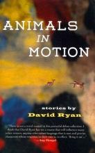 Ryan, David Animals in Motion