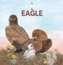 Renee Rahir The Eagle. Animals in the Wild