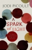 Picoult Jodi, Spark of Light