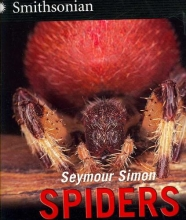Simon, Seymour Spiders