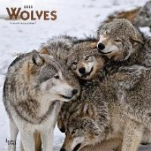 Inc Browntrout Publishers Wolves 2020 Square Wall Calendar