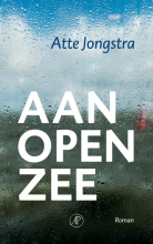 Atte  Jongstra Aan open zee