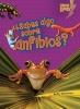 Silverman, Buffy,¿Sabes algo sobre anfibios?/ Do You Know About Amphibians?