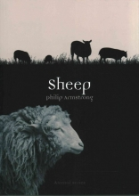 Philip Armstrong Sheep