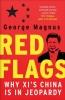 George Magnus, Red Flags