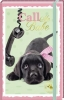 , Adresboek A6 hond