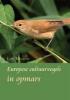 Lou  Megens, Europese cultuurvogels in opmars